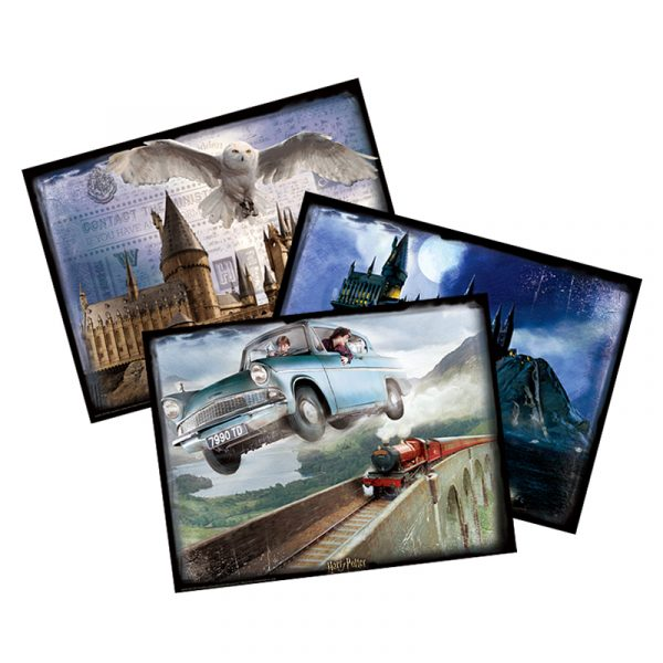Harry Potter Classic Shot Harry Potter Fan Collection Harry Potter Fandom Collectibles Harry Potter Display Wall Mural Wallpaper Cubicfun Lenticular Printing 3D Image Paper Jigsaw Puzzles